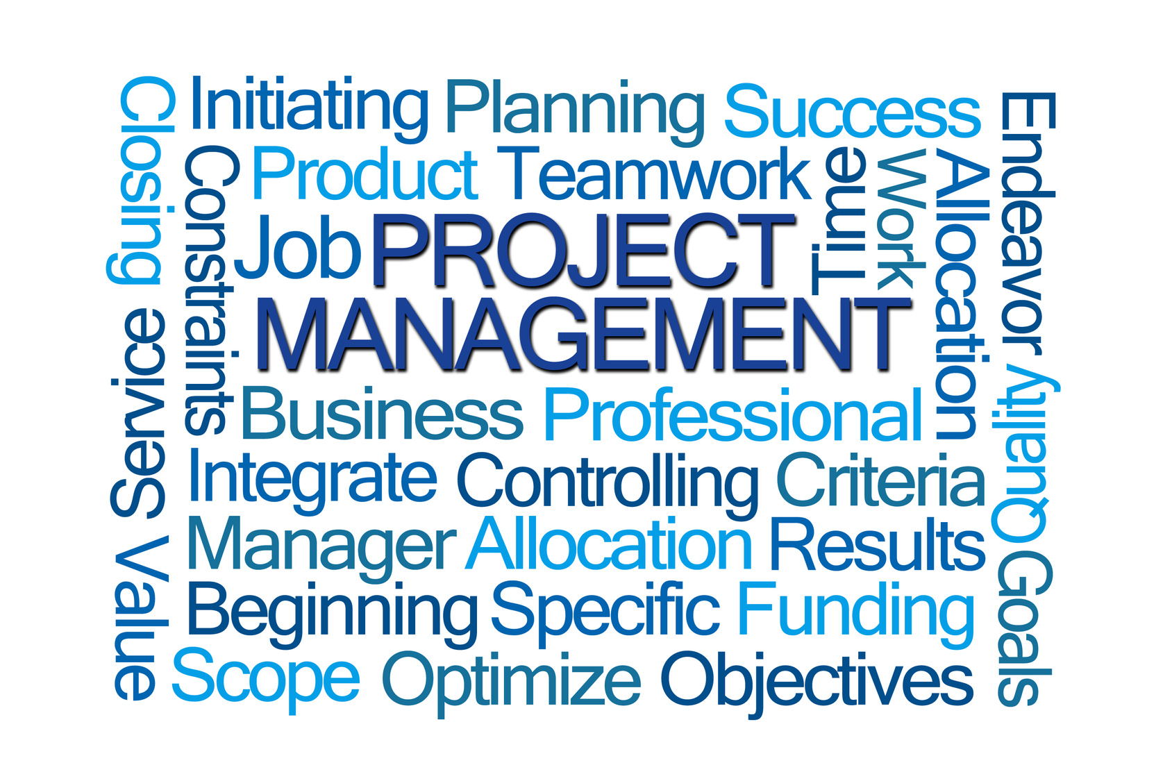 essay management of business projects